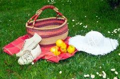 庭院帽子草甸野餐 免版税图库摄影
