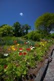 庭院房子 图库摄影