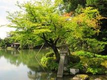 庭院房子kenrokuen木的池塘 图库摄影