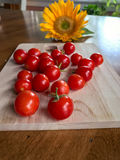 庭院新鲜的本地出产的蕃茄和向日葵在餐桌上 库存照片