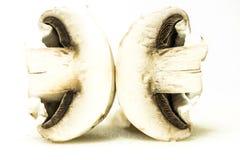 庭院新鲜的蘑菇 免版税库存照片