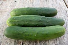 庭院新鲜的黄瓜3 图库摄影