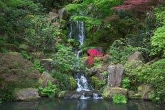 庭院日本人池塘 图库摄影