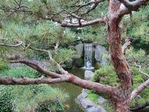 庭院日本人瀑布 免版税库存图片