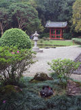 庭院日本休眠天鹅 免版税图库摄影
