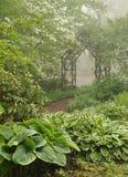 庭院有薄雾的树荫格子 库存图片