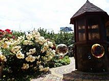 庭院村庄生活 免版税库存照片