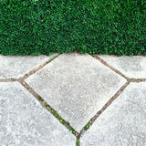 庭院树篱和石头瓦片 免版税图库摄影
