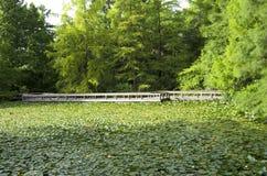 庭院桥梁池塘 库存照片