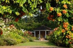 庭院横向 免版税库存图片