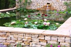 庭院池塘 免版税库存照片