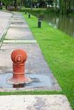 庭院池水 库存图片