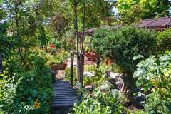 庭院流洒了掩藏由美丽的开花的花和植物 图库摄影