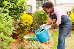 庭院浇灌的妇女 免版税库存照片