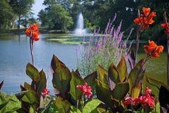 庭院湖春天 库存照片