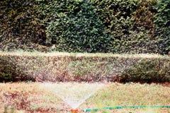 庭院灌溉水管 库存图片