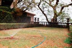庭院灌溉水管 免版税库存照片