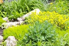 庭院片段环境美化 库存照片