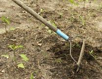 庭院犁耙 免版税库存照片
