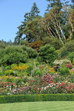 庭院环境美化上升了 库存图片