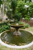 庭院环境美化 库存照片