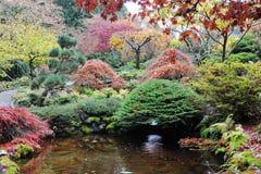 庭院环境美化 免版税库存照片