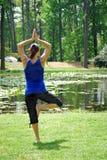 庭院瑜伽 免版税库存图片
