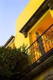 庭院瓜达拉哈拉墨西哥 免版税库存照片