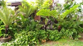 庭院的一个角落在家 免版税库存图片