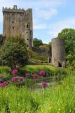 从庭院的奉承城堡 免版税库存图片