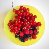 从庭院的新近地被收获的果子 免版税库存照片