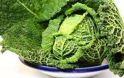从庭院的新鲜的圆白菜 免版税图库摄影