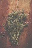 从庭院的新鲜的湿莳萝在老木桌上 草本ba 免版税库存图片
