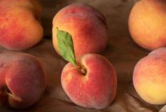 从庭院的本地出产的水多的桃子 有机 库存照片