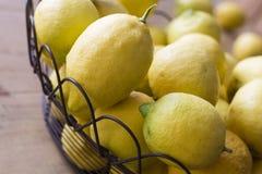 从庭院的被采摘的柠檬 库存图片