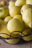 从庭院的被采摘的柠檬 库存照片