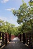 庭院石走道绕 免版税图库摄影