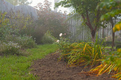 庭院秋天有雾的早晨 免版税库存图片