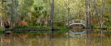 庭院种植园池塘 免版税库存照片
