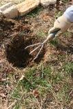 庭院种植 免版税库存图片