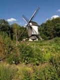 庭院绿色老风车 免版税库存图片