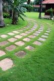 庭院绿色路径 库存照片