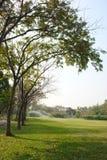 庭院自然 免版税图库摄影