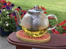 庭院茶 免版税库存图片