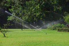庭院草坪水喷水隆头。 图库摄影