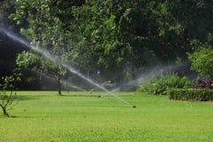 庭院草坪水喷水隆头。 免版税库存照片