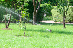 庭院草坪水洒水装置 库存图片