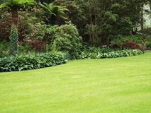庭院草坪 图库摄影