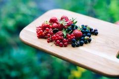 庭院莓果 库存照片