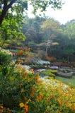 庭院视图 库存照片